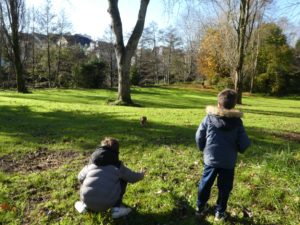 Eduquer son chiot-école du chiot-récré à chiot-Quimper Lorient Finistere Morbihan