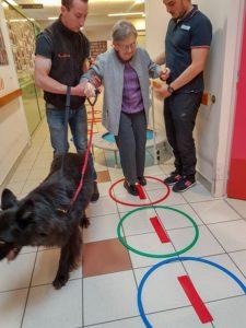 Thérapie assistée par l'animal (TAA) ou Animo'forme