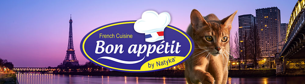 Croquettes pour chat Bon Appetit Quimper