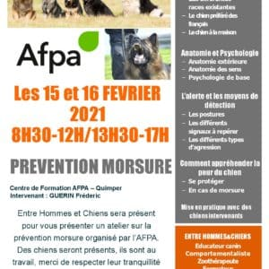 Atelier prévention morsures La Poste Quimper